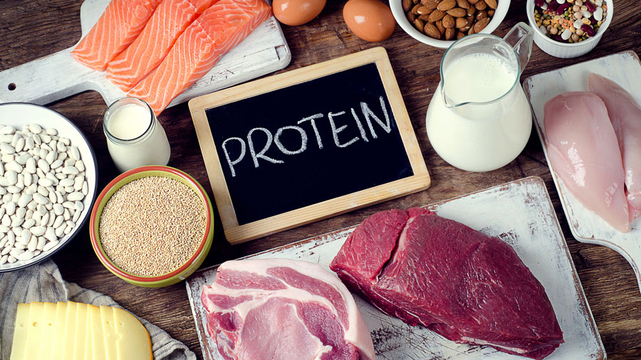گرم پروتئین