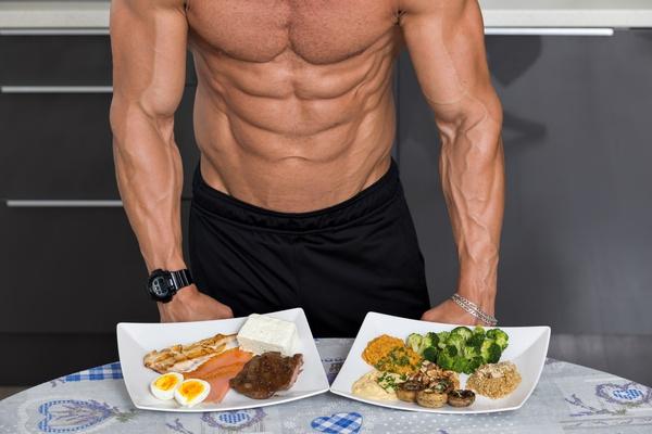غذای پروتئینی