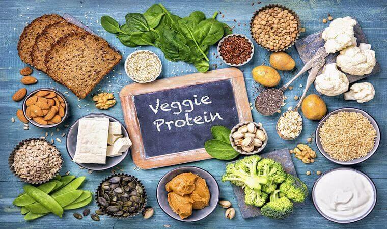 انواع پروتئین گیاهی
